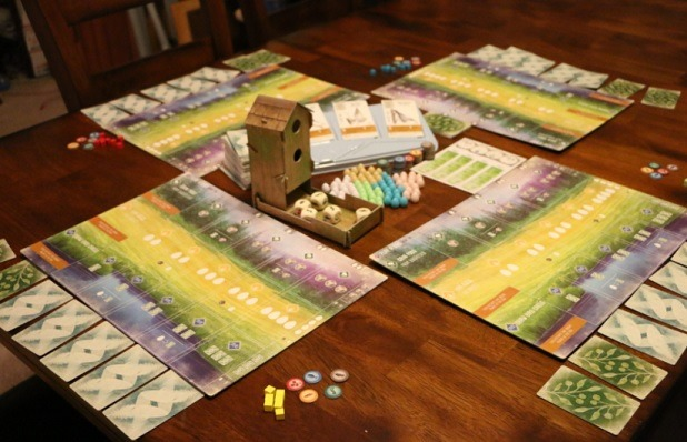 top 10 family board games wingspan setup on table